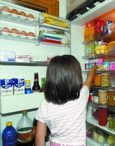 frigorífico abierto